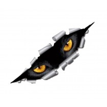 Creative 3D Car Decal Unique Funny Car Sticker [Cat Eye]
