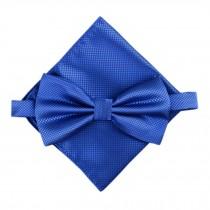 Stylish Wedding Bow Tie Pocket Square Pocket Cloth Handkerchief Royalblue