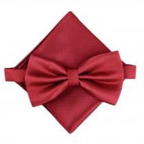 Stylish Wedding Bow Tie Pocket Square Pocket Cloth Handkerchief Wine Red